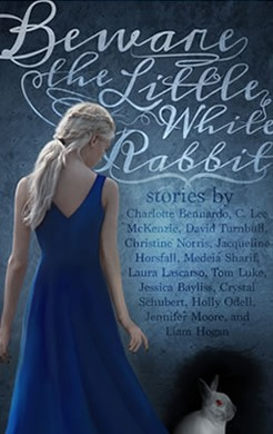 Beware of the Little White Rabbit by author C. Lee McKenzie